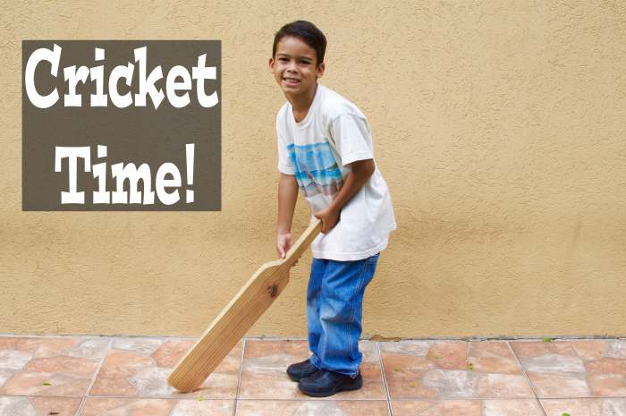 cricket time